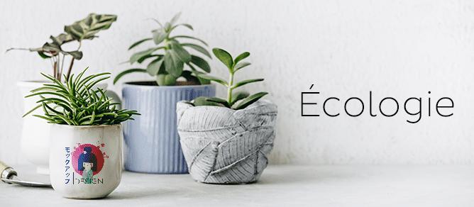 Écologie - Éthique